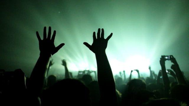 Hands at a gig